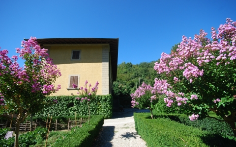 Private holiday villa with pool VILLA BOGGI