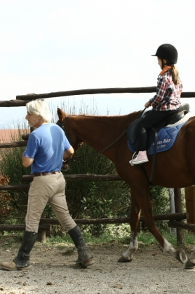 Trail riding and trekking - Riding school
